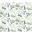 seamless pattern eucalyptus palm fern leaves vector image