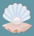 cartoon seashell with a pearl seashell vector image