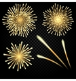 Celebratory bright fireworks on gradient vector image