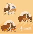 cute animal icons cartoon vector image