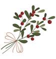 flower poinsettia cartoon christmas flower vector image vector image