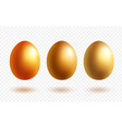 gold egg with shadow vector image vector image