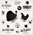 Poultry Cuts Diagram and Butchery Design Elements vector image