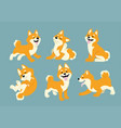 shiba inu cartoon set vector image vector image