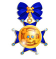 beautiful medal in style pirates vector image vector image