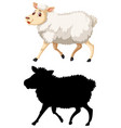 colorful and silhoutte sheep vector image vector image