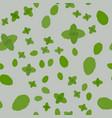 green eco mint leaf background ecology mint vector image vector image