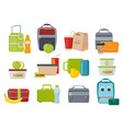 lunch box fruits and vegetables for kids dinner vector image vector image