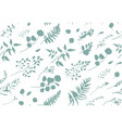 seamless pattern of eucalyptus palm fern leaves vector image vector image