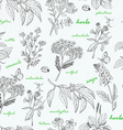 seamless pattern with herbs on a white background vector image vector image