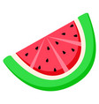 watermelon slice fruit with seeds summer berry vector image