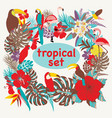 background with of tropical birds palm leaves and vector image vector image