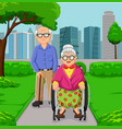 cartoon elderly couple in the park vector image