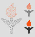 fired aircraft mesh 2d model and triangle vector image vector image