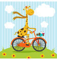 giraffe bird riding on bicycle vector image vector image