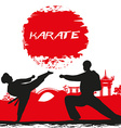 karate occupations - Grunge background vector image vector image