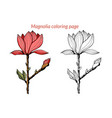 magnolia flower coloring page vector image vector image