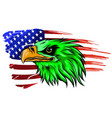 national symbol usa flag and eagle vector image vector image