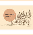 pine forest background hand drawn nature landscape vector image vector image