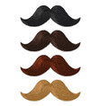 realistic color moustaches black blond and brown vector image