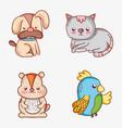 set of pets doodles cartoons vector image