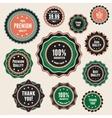 set vintage badges and labels vector image