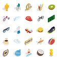 solution search icons set isometric style vector image vector image