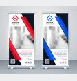stylish blue and red rollup banners set vector image vector image