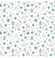 Textile tribal background Geometric scandinavian vector image vector image