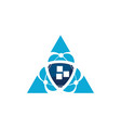 triangle security vector image vector image