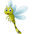 cartoon dragonfly flying green smile vector image