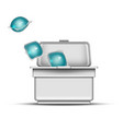 cubes of washing powder in blank white box vector image