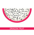dragon fruit isolated on white vector image vector image