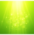Green rays of light bokeh blurred vector image