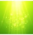 Green rays of light bokeh blurred vector image vector image
