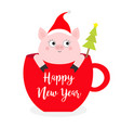 happy new year 2019 pig sitting in red coffee cup vector image