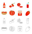 isolated object vegetable and delicious icon vector image vector image