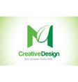 m green leaf letter design logo eco bio leaf vector image vector image
