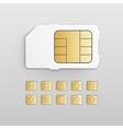 Mobile Cellular Phone Sim Card Chip Set vector image vector image
