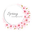 spring background with a pink blooming flowers vector image