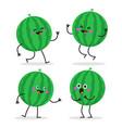 watermelon cute fruit character set vector image vector image