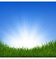 grass and sunbeam vector image