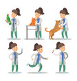 vet woman cartoon character set pets health care vector image