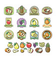 fruit badge templates labels with sample text vector image
