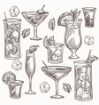 cocktails isolated sketches ice and fruit slices vector image
