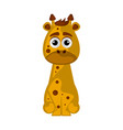 isolated cute giraffe on white background vector image vector image