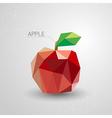 Juicy apple polygon vector image vector image