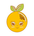 kawaii nice shy orange fruit vector image vector image