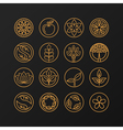 nature symbols - concept for organic shop vector image vector image