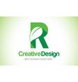r green leaf letter design logo eco bio leaf vector image vector image